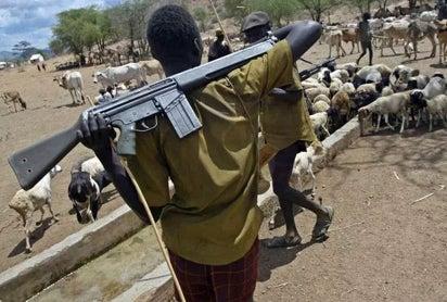 56 Died as Fulani Herdsmen Attack Benue and Taraba